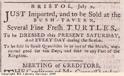 Advert for sale of turtles