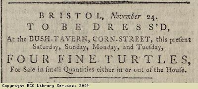 Advert for the sale of turtles