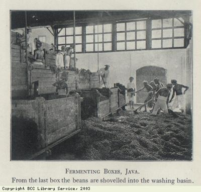 Fermenting Boxes, Java