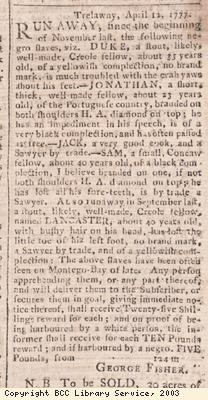 Newspaper extract, runaway slaves