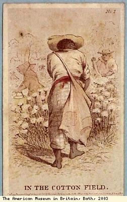 Slave card, In the Cotton Field