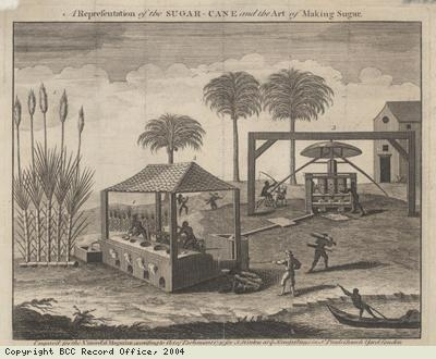 The Sugar Cane and the Art of Sugar-Making