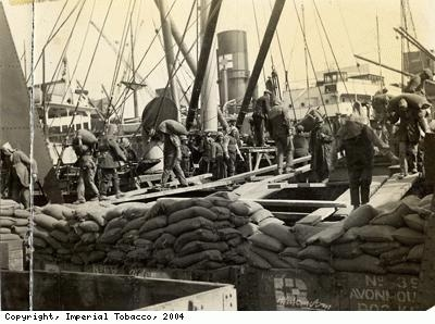Ship unloading cottonseed meal